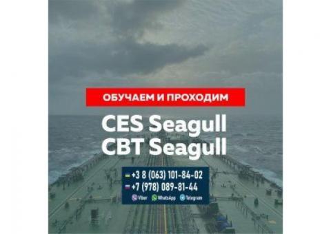 Обучение для сдачи тестов для моряков Seagull CES, Seagull CBT и другие